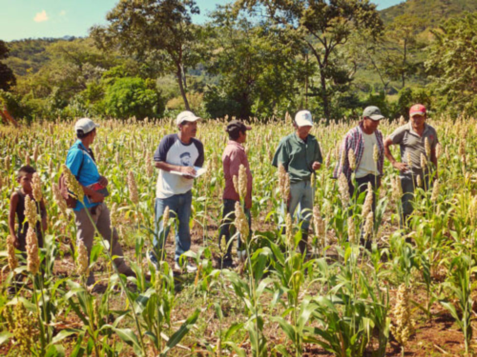 Les Projets aux Nicaragua